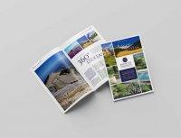 Boschi Immobilier - Magazine N°1