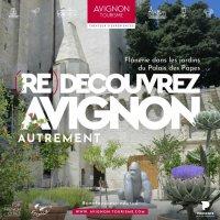 Campagne été 2020 - Avignon Tourisme